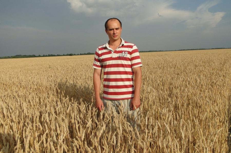 Молодой агроном Компании Агромир понимает пользу от десикации.