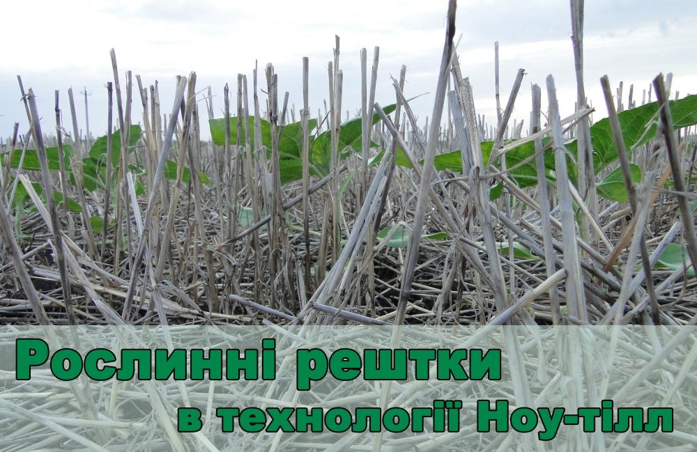 roslynni reshtky_golovna_ua