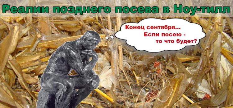 Поздний посев озимой пшеницы в Ноу-Тилл — риск или требование времени?