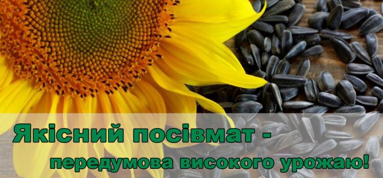 На що звернути увагу при виборі посівмату соняшника? Закладаємо основи високого урожаю.