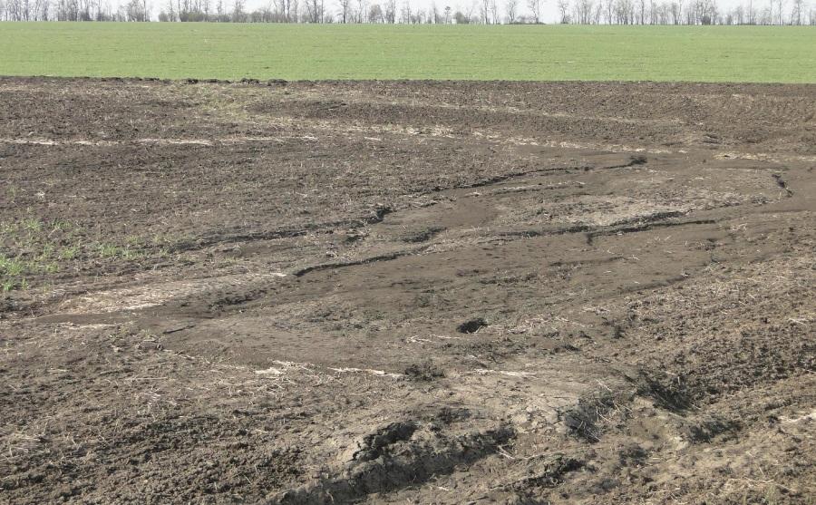 Водная эрозия в Николаевской области