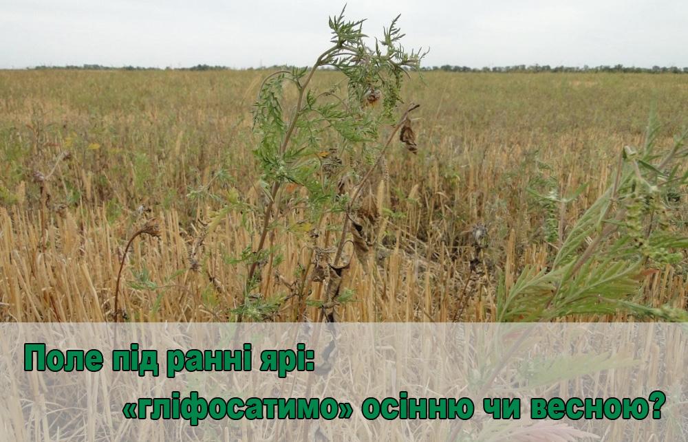 ranni yarovie-glavn-ua